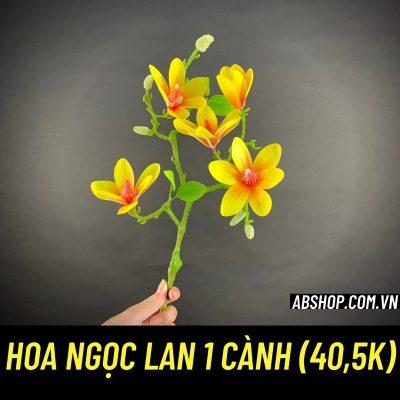 hoa-ngoc-lan-1-canh-loai-dep