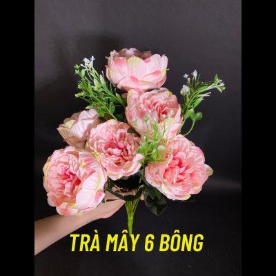 tra-may-6-bong-trang-tri-loai-dep
