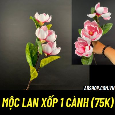 moc-lan-xop-1-canh-trang-tri-cam-hoa-dep